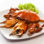 Changurro de Buey de Mar con jamón y vino fino, nuevo Plato Chef